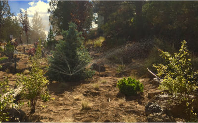 Bend Oregon excavation, retaining wall and water feature construction
